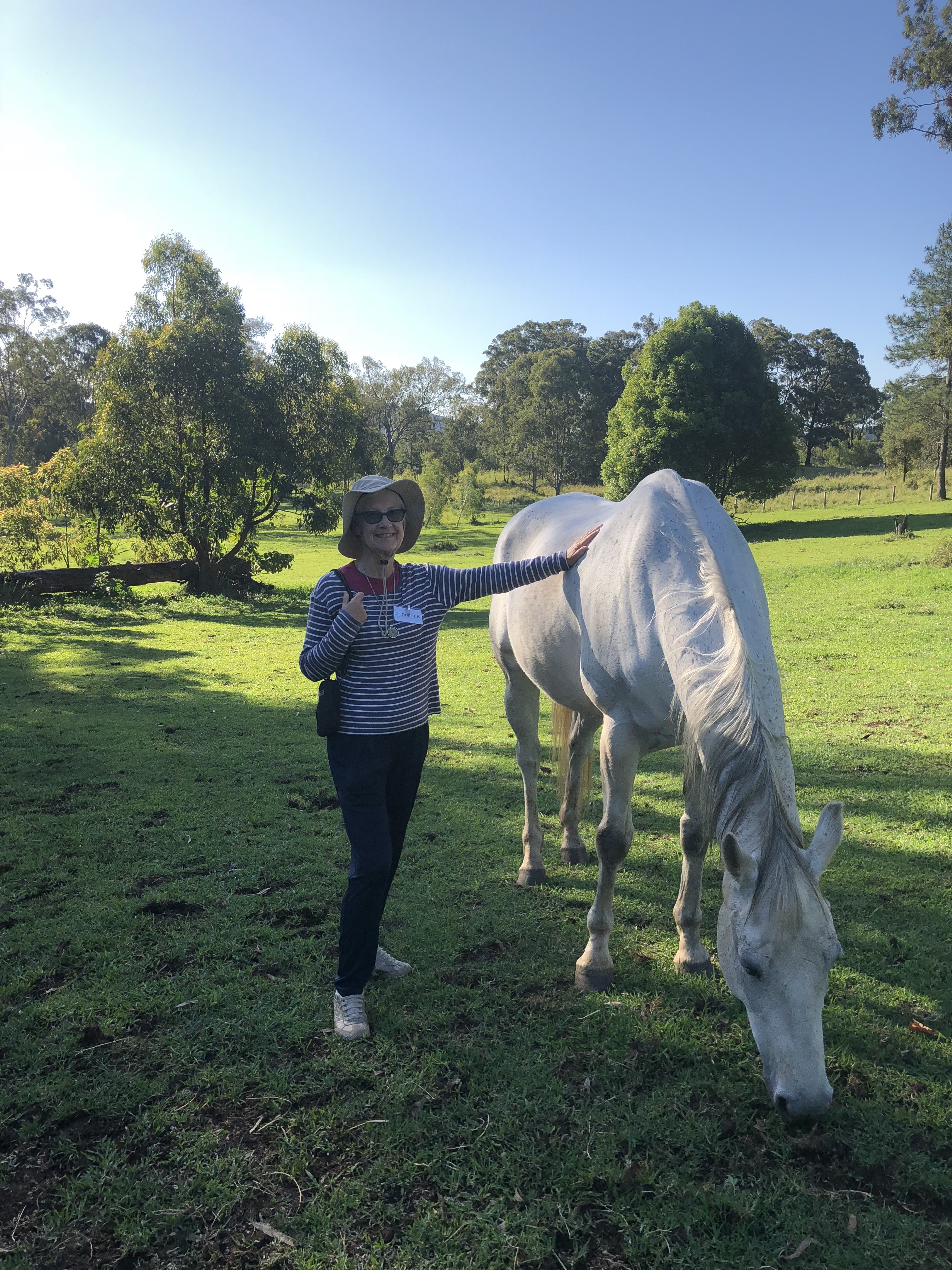 Horse therapy Gwinganna
